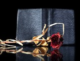 Old leather book cover wilted rose reflected poster