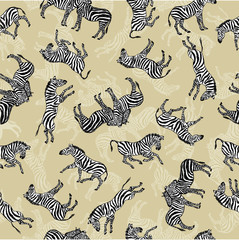 background of zebras