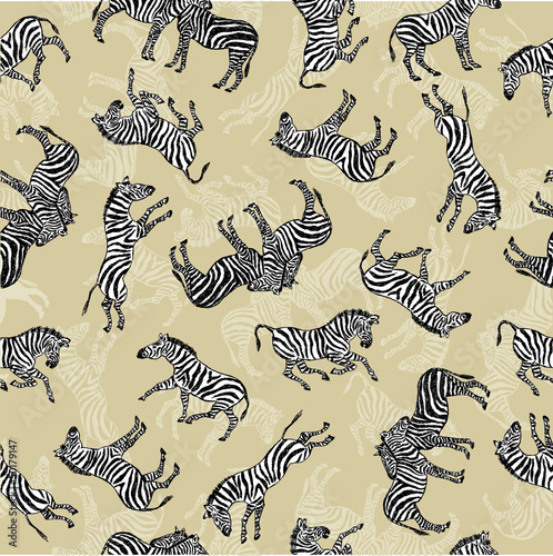 tło zebry