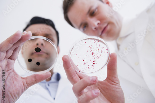 Scientists looking at petri dishes
