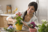 Mixed race woman potting flowers in kitchen