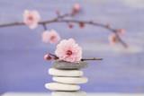 Gałąź różanych kwiatków i kamyczki - 50180742