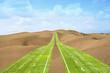 Highway of grass crossing the desert