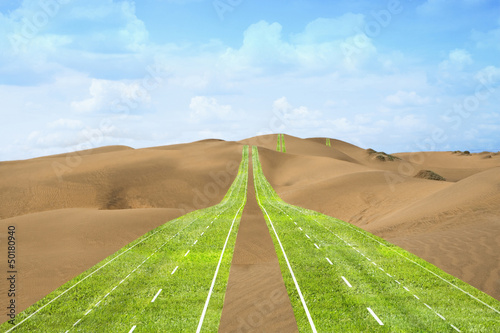 Highway of grass crossing the desert