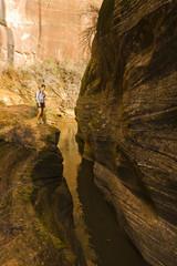 Persian woman hiking near canyon stream