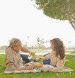 Caucasian couple drinking wine at picnic