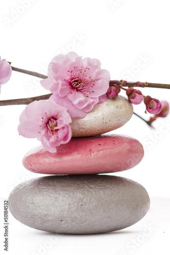 canvas print picture fleurs zen