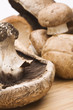 Close up of cremini mushrooms