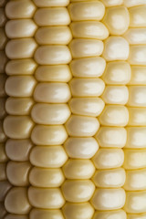 Close up of corn on the cob
