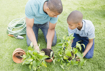 Father and son gardening