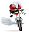 coccinella biker