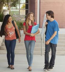 School friends walking together