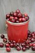 Bing cherries in bucket