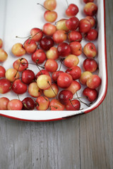 Rainier cherries in pan