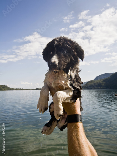 Man holding wet puppy near lake