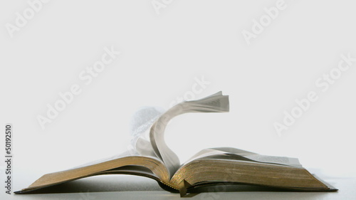 Bible pages turning in the wind on white background