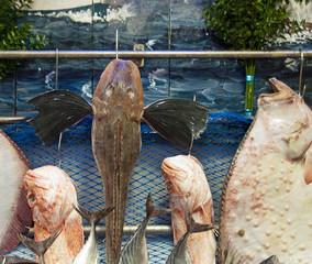 Fish Market Istanbul