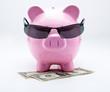 Tirelire avec lunettes de soleil sur billets US Dollars