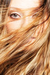 woman face behind flying hair