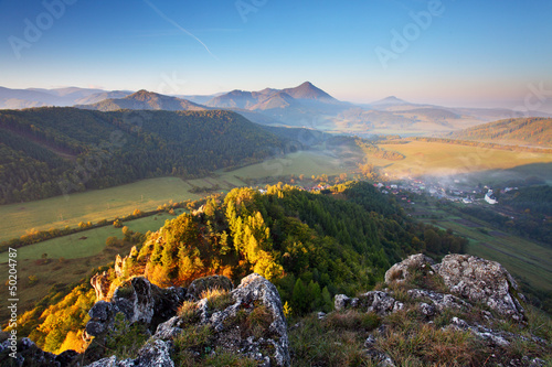 Mountain summer landscape with colorful forest