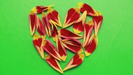 Hand pushing the petals of flowers heart shaped