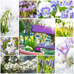 Spring collage - Frühling Collage