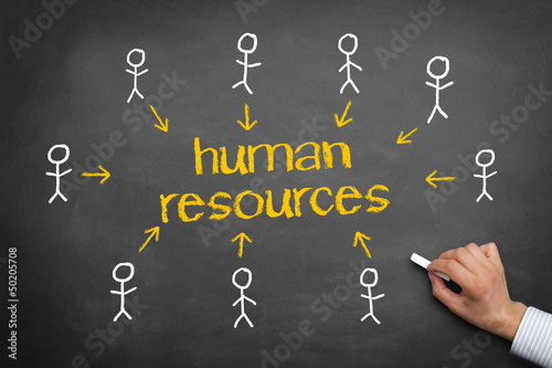 Human Resources / Network