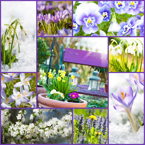 Spring collage - Frühling Collage