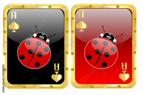 Carte da poker portafortuna con coccinella