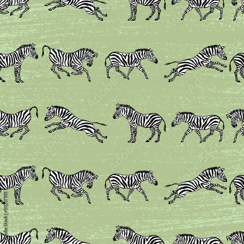 background with zebras