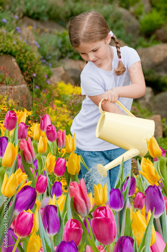 Spring garden - lovely girl watering flowers in the garden