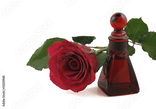 Red Rose and Rose Oil