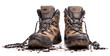 hiking shoes - 50211363