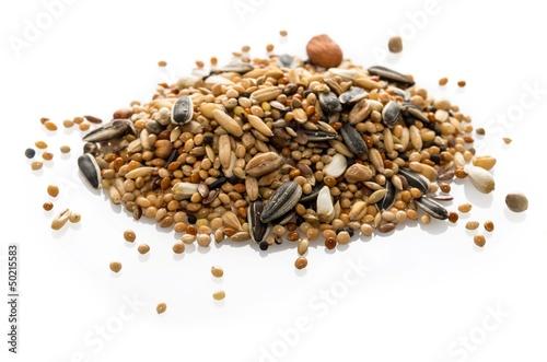 Staande foto Papegaai Mélange de graines pour perruches.