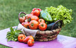 fresh vegetables on the table in the garden