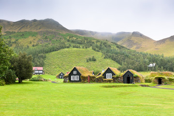 Overgrown Typical Rural Icelandic houses at overcast day