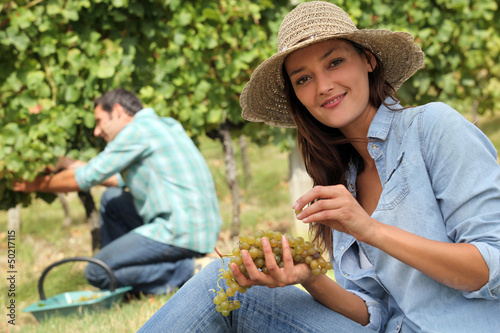 Man and woman working in vineyards