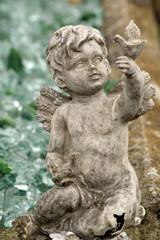 cherub angel