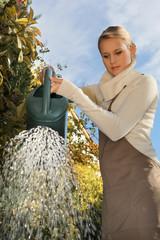 Women in the garden watering her plants