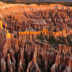 Sun-Touch @ Bryce Canyon