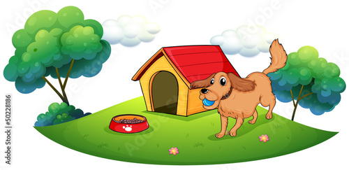 A dog playing with a blue ball near a doghouse