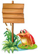 A frog above the water lily beside the wooden signboard