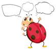 A thinking bug