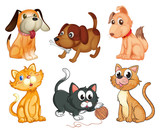 Lovable pets poster