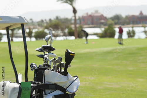 Closeup of golf clubs in a bag