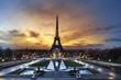 Tour Eiffel - 50240126