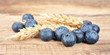 Blueberries with wheat