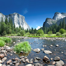 Californie - Parc national de Yosemite