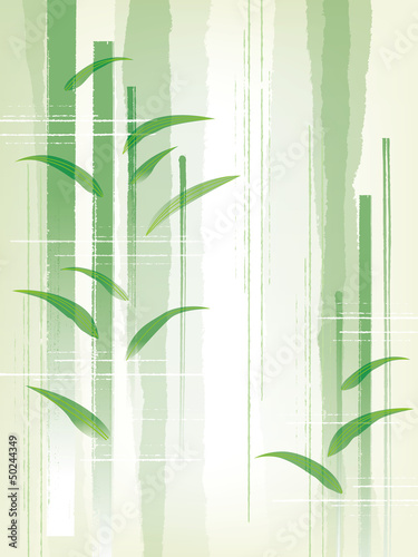 Fototapeten,bambus,bambuswald,tanabata,juli
