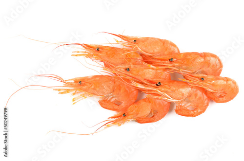 shrimps on an isolated background